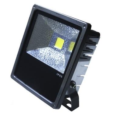IP 65 FL 50 by Petersen LEDs