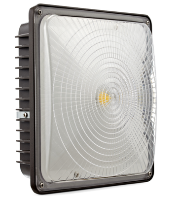 LED 70 Canopy light by Petersen