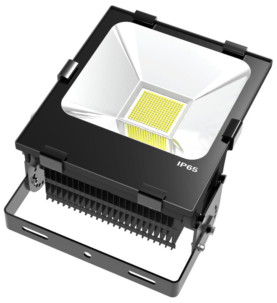 IP65FL100 LED by Peterson