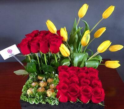 Olimpo - Rosas y Tulipanes
