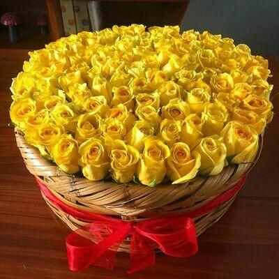 Prado de Rosas - 100 rosas