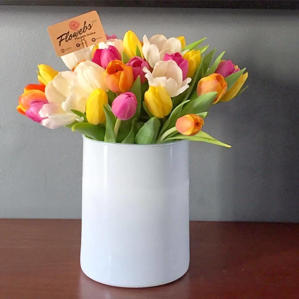 Cloris - 40 tulipanes de colores