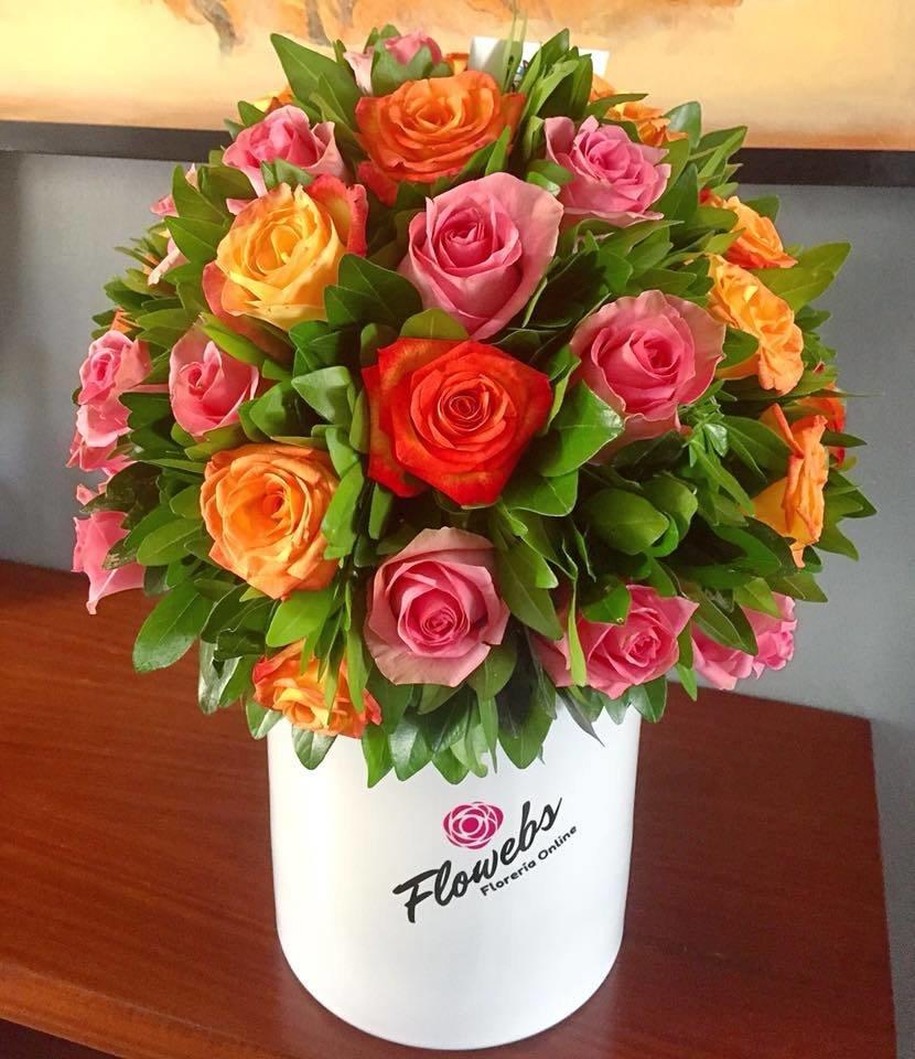 Rosas Chic