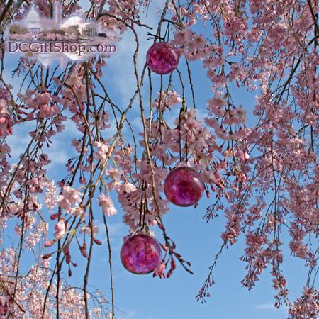 Ornaments - Glass - Cherry Blossom Glass Balls (Set of 3)