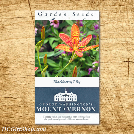 Blackberry Lily Heirloom Seeds - 3 pack