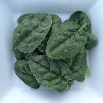 Bloomsdale Spinach - 4lbs - $18