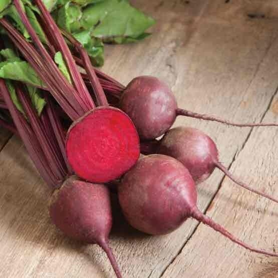Baby Red Beets - 24ct - $21