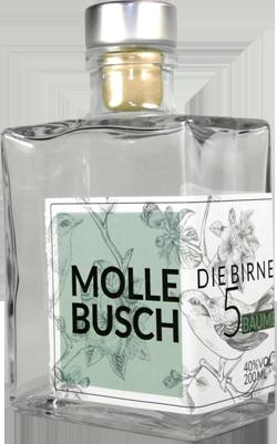 Mollebusch (Wolfgang Schlett)