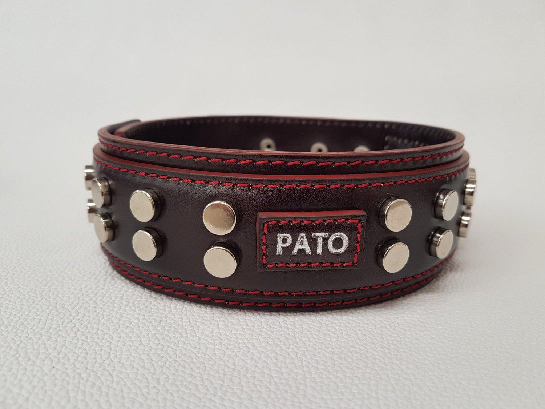 Mod. Pato1