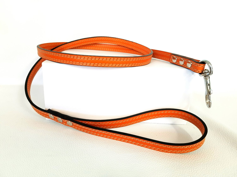 Arancione / Orange