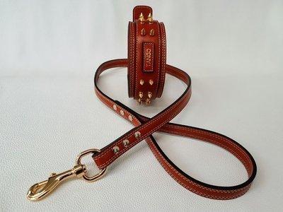 Kit Brandy. Altezza collare 6 cm / collar height 2,36 in