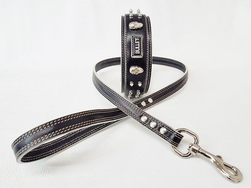 Kit Dante. Altezza collare 5 cm / collar height 1,97 in