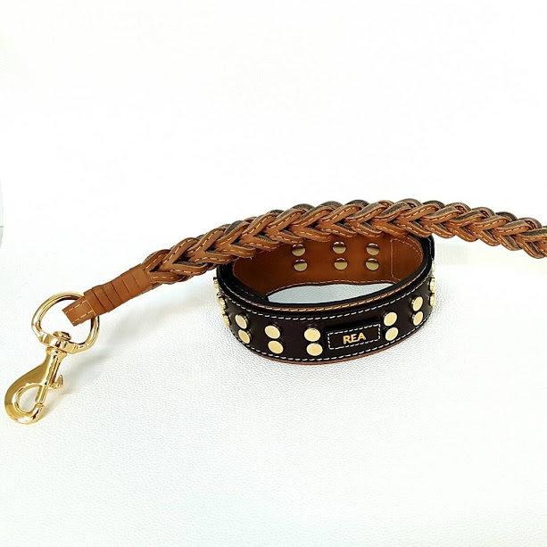Kit Rea. Altezza collare 5 cm / collar height 1,97 in
