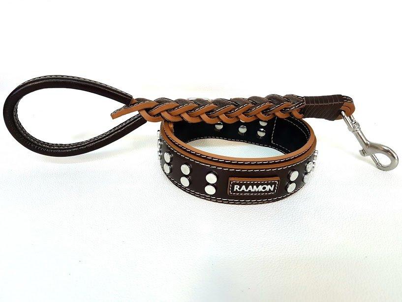 Kit Raamon. Altezza collare 5 cm / collar height 1,97 in