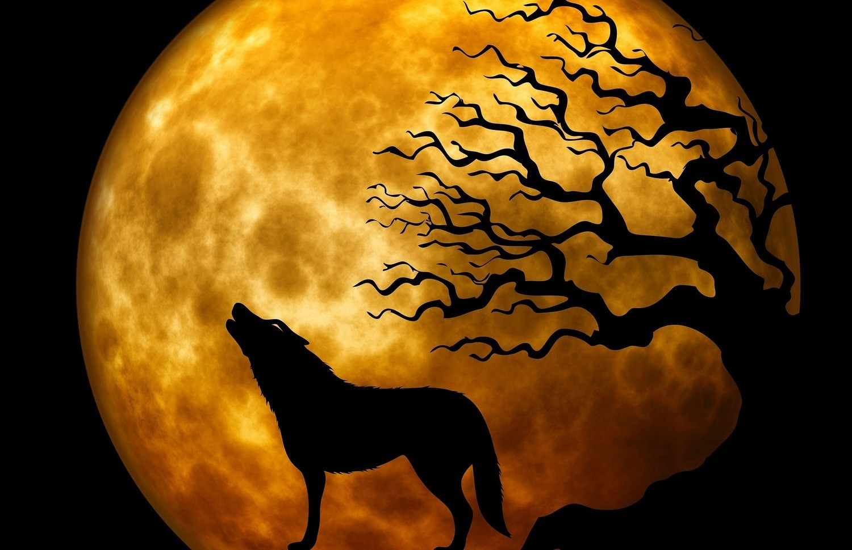Lunar Eclipse Super Blood Wolf Moon Spell Casting $49