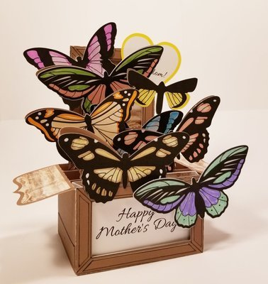 Butterfly Box Card (Any Celebration)