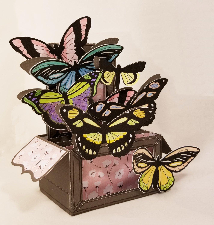 Butterfly Box Card (Any Celebration)