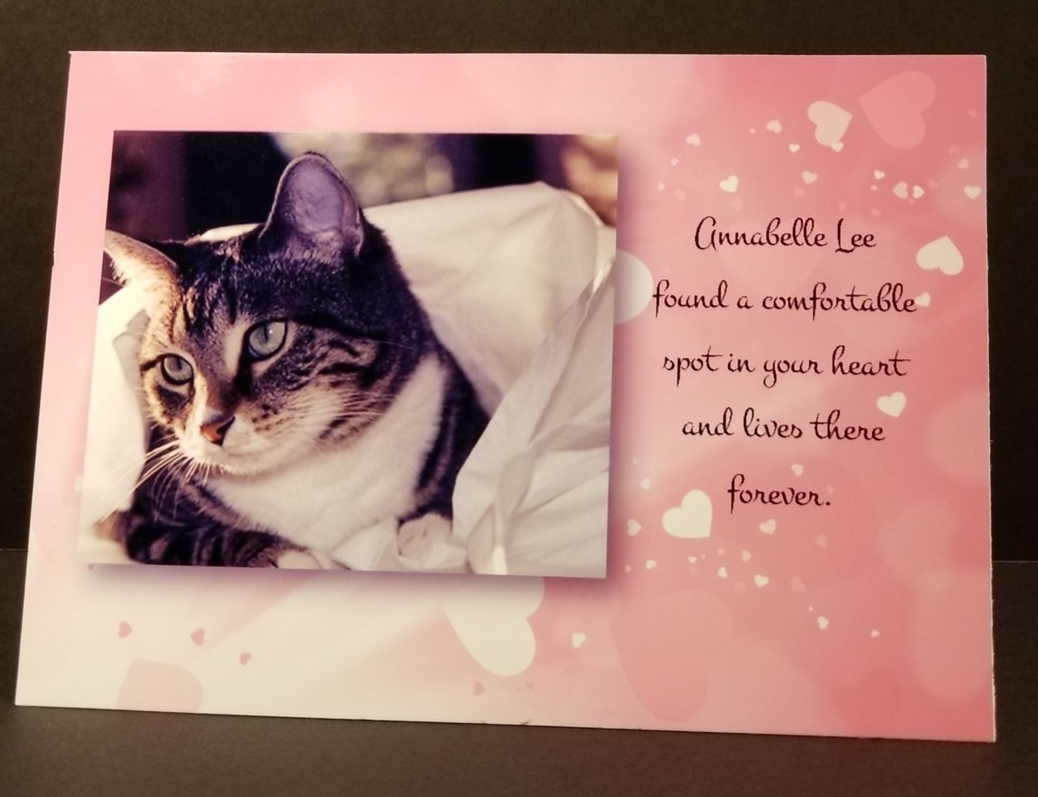 Cat Sympathy Card (with photo or Cat Angel Graphic)