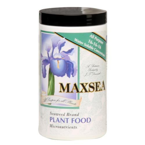 Maxsea Fertilizer 16-16-16  for Carnivorous Plants and Orchids