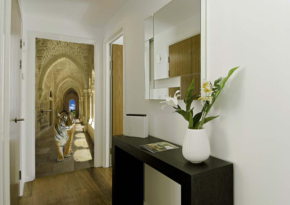 paroi vitr e douche. Black Bedroom Furniture Sets. Home Design Ideas
