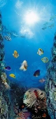 Краски моря-2. Дверные обои. Размер: 97х204 см.