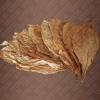 Махорка лист на кусте1 кг.