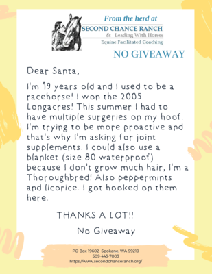 A BLANKET, SUPPLEMENTS, and TREATS for NO GIVEAWAY