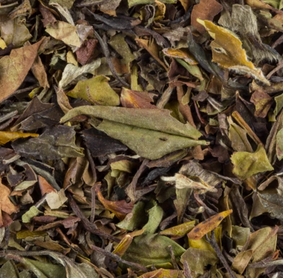 White Kumaon tea, organic, 1 oz.