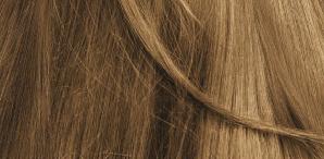 Biokap. Краска для волос (Delicato+) тон 8.03 «Блондин натурально-светлый» 8.03, 140 мл арт. ND 00803,