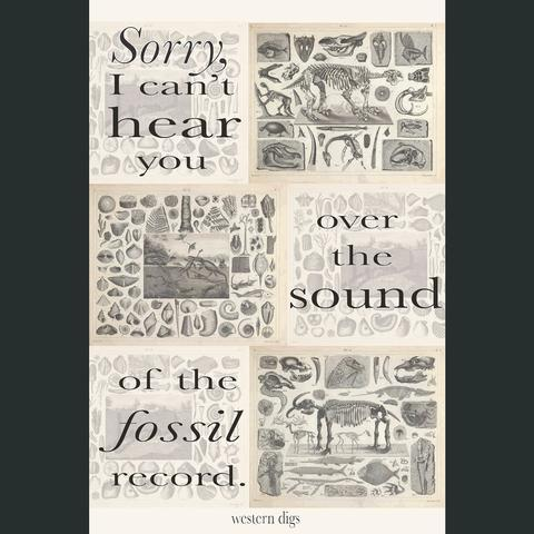 Sound of the Fossil Record Poster