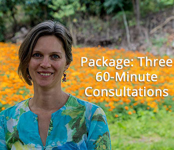 Package- Three One-Hour Consultations