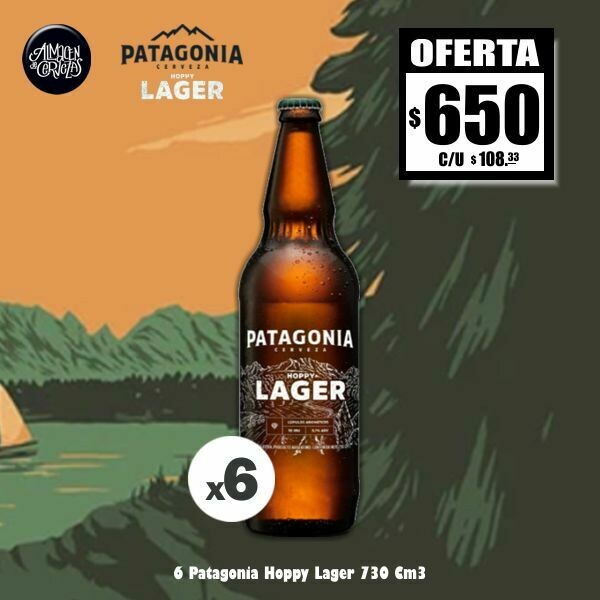 OFERTA - 6 Patagonia 730 Cm3 Hoppy Lager