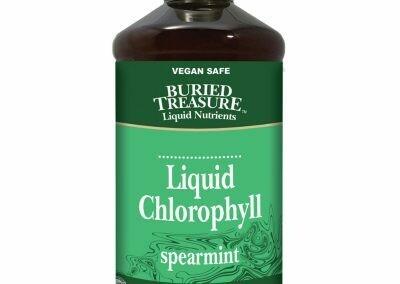 Liquid Chlorophyll 16 oz. - Buried Treasure