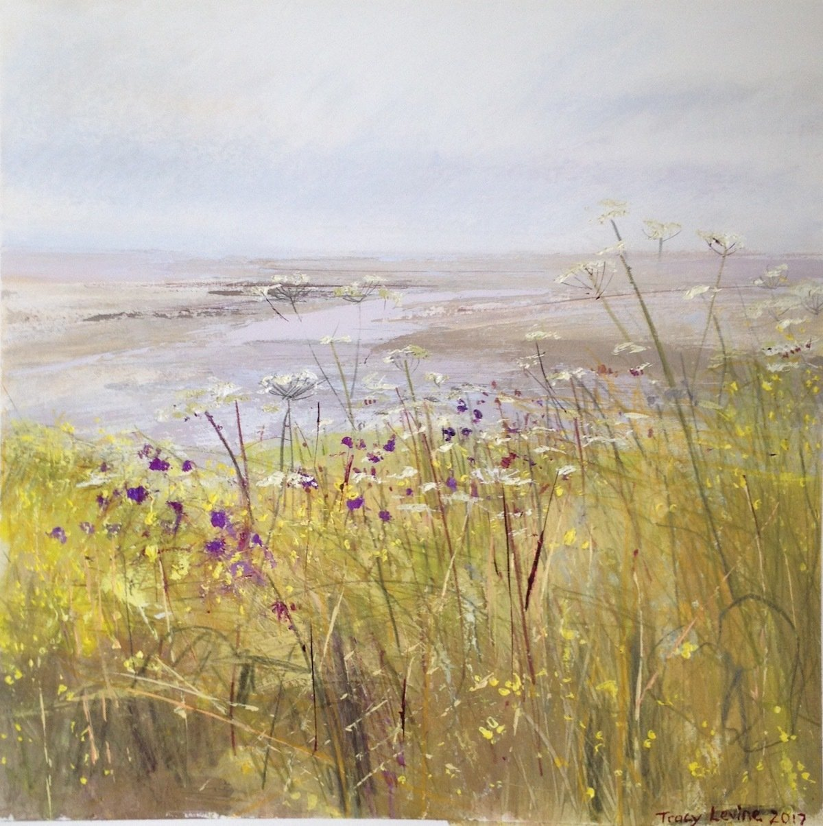 Cove, with Yellow Weeds