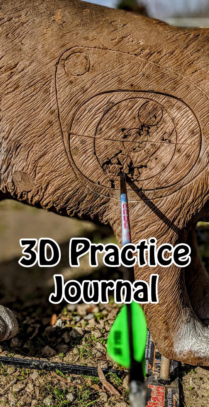 3D Practice Journal