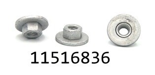 GM 11516836