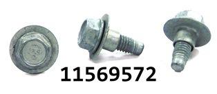 GM 11569572
