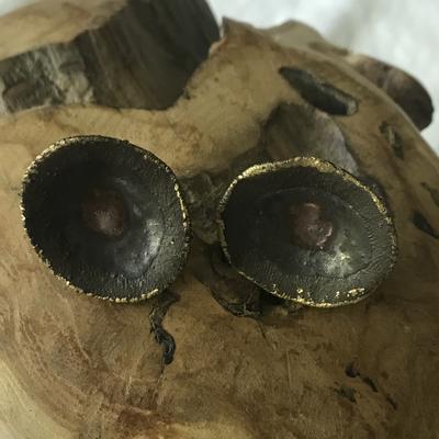 Ohrclips braun/gold Keramik
