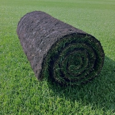 Supreme Turf  - (SALE) FROM £2.80 per m2 NW-Turf-Dlx