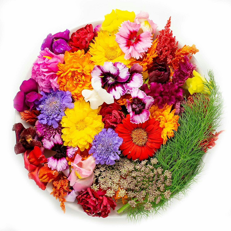 Edible Flower Mix (1 pot)