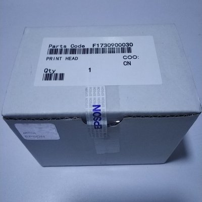Epson L1800 Printhead, F173090