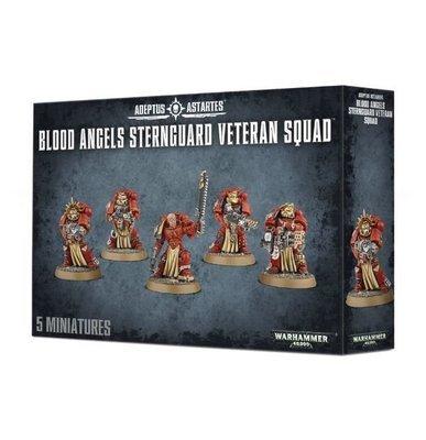Blood Angels Sternguard Veteran Squad