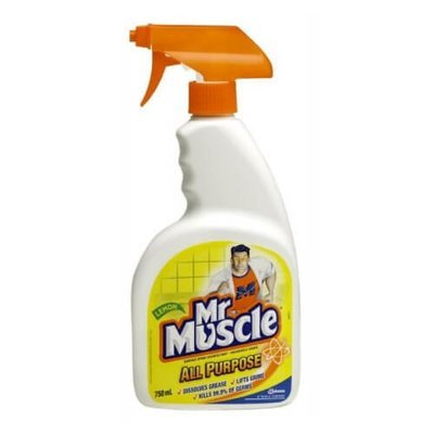MR MUSCLE ALL PURPOSE CLEANER WITH TRIGGER 750ML