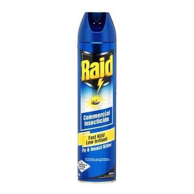 INSECT SPRAY RAID FAST KILL 300G