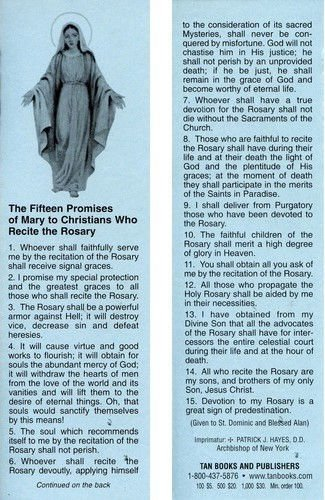 15 Promises of the Rosary Bookmark (Ten Pack)