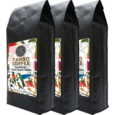 3-month subscription - Coffee from Ecuadorian Cloud Forest - Medium Roast Whole Coffee Beans