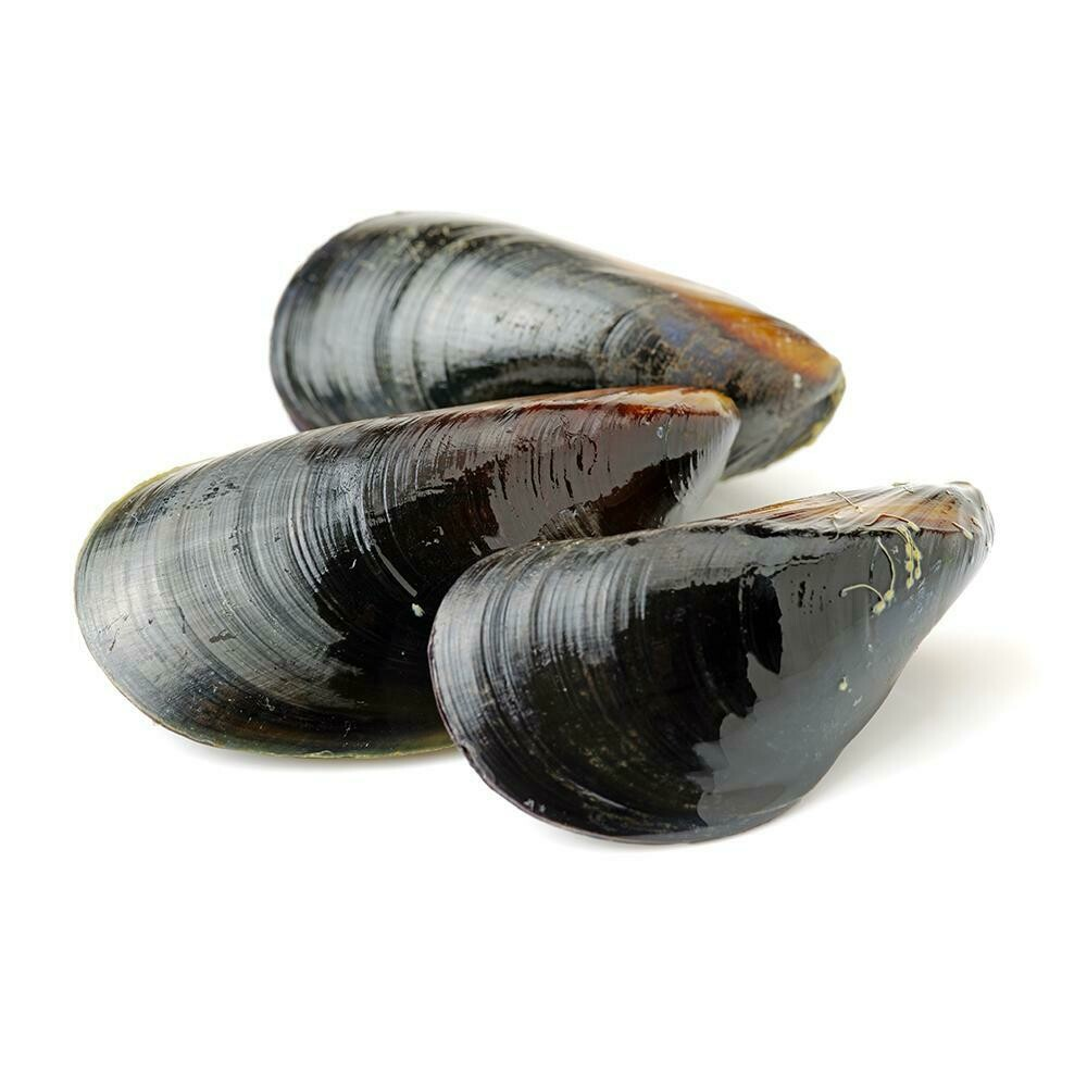 * Frozen Whole Chilean Mussels, Fully Cooked, Vac Pack, 2 Pounds