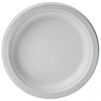 """* Sunset Heavy Weight 9"""" Paper Plates 500 Count"""