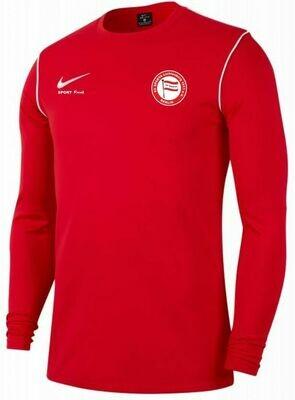 Nike Sweat-Shirt Park 20 Erwachsene SV Sparta Lichtenberg