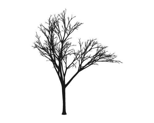 Fall Tree vinyl graphics